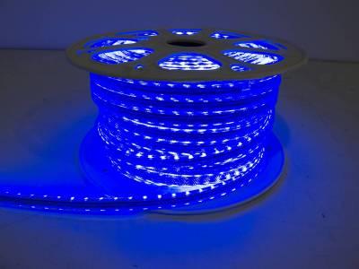 "Race Sport - Race Sport 110V ""Atmosphere"" Waterproof 5050 LED Strip Lighting Blue RS-5050-164FT-B"