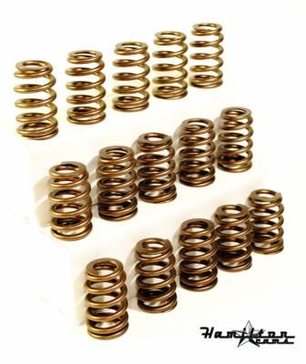 Hamilton Cams  - 6.7L performance valve springs