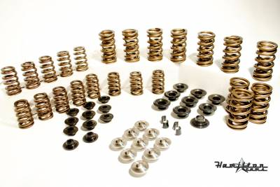 Engine Parts & Performance - Valve Springs - Hamilton Cams  - 103 Springs with retainers - Tool Steel